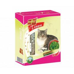 Tráva pre mačky 100g