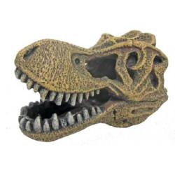 Tyrannosaurus lebka 14x8,5x9cm